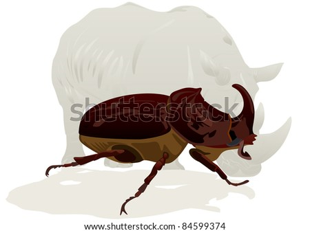 Illustration depicting a rhinoceros and rhino beetle on white background