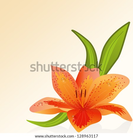 Illustration lily flower on gradient background.