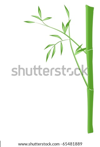 Illustration of a bamboo stick with leafs