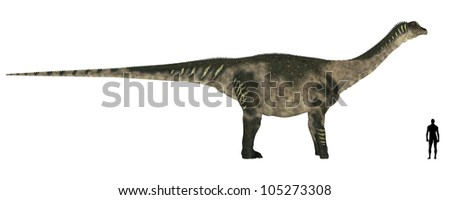Illustration of a comparison of the size of an adult Antarctosaurus with an average adult male human (1.8 meters)