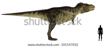 Illustration of a comparison of the size of an adult Tyrannosaurus with an average adult male human (1.8 meters)