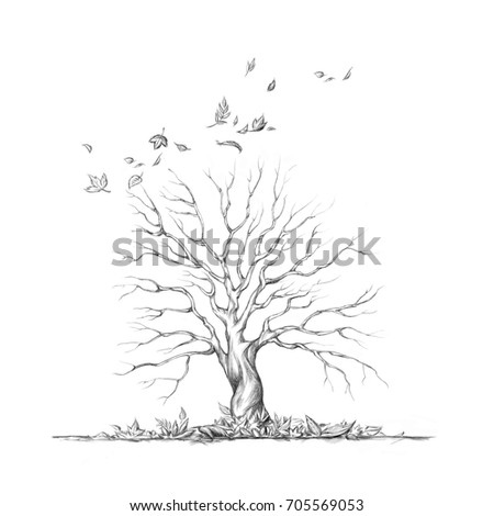 Illustration of a Defoliated tree in autumn