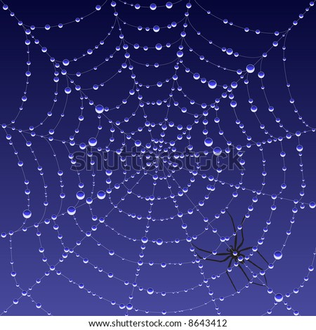 Illustration of a dew covered spiderweb at dawn (vector version also available)