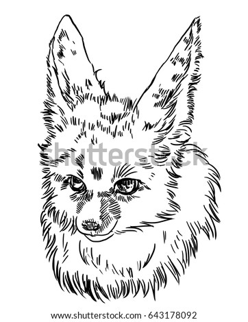 illustration of a hand made fox feng on a tablet a fox with big