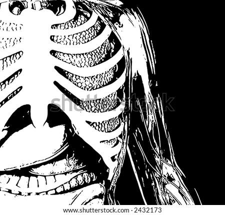 Illustration of a human rib cage