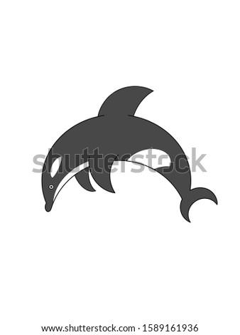 illustration of a Killer whale