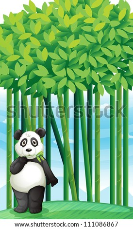 illustration of a panda in nature