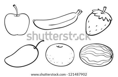 Fruit Sketch Drawing Illustration of a Sketch of