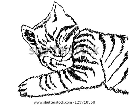 Illustration of a sleeping cat.  Raster image