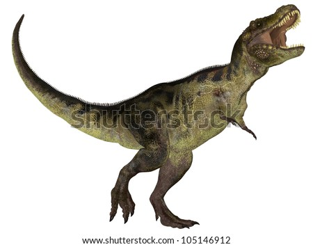 Illustration of a Tyrannosaurus (dinosaur species) isolated on a white background
