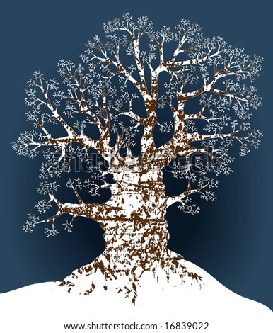 Illustration of an oak tree in winter