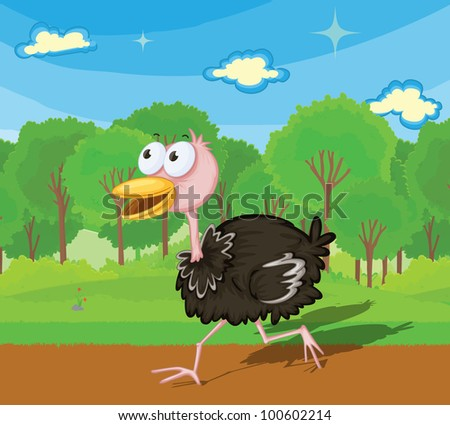 Illustration of an ostrich running - EPS VECTOR format also available in my portfolio.