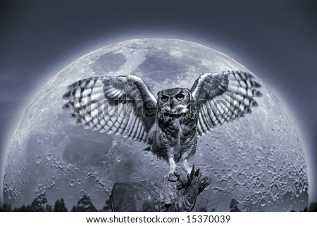 Illustration of an owl against a full moon.