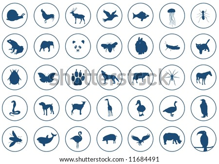 Illustration of 35 Animal icons. each is 410 by 410 pixels