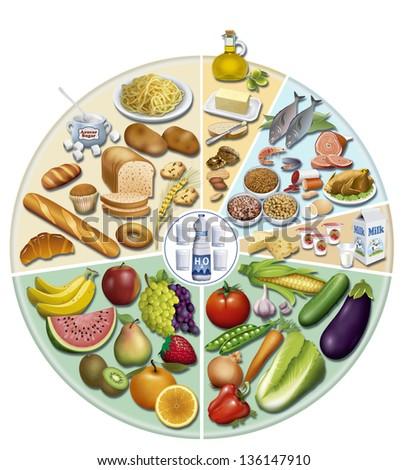 Shutterstock illustration of balanced feed wheel nutricióny health