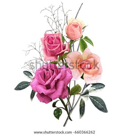 illustration of beautiful flower on white background
