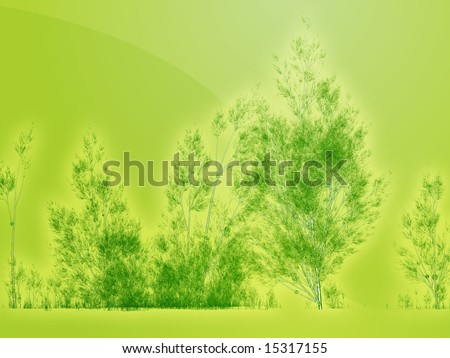 birch tree wallpaper. irch tree wallpaper. of irch