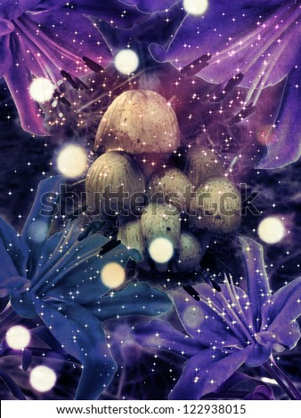 Illustration of colorful fantasy mushrooms at night with magic flowers.