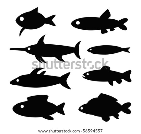 Different Types Of Fishes In