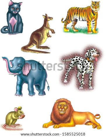 illustration of domestic animals and wild animals