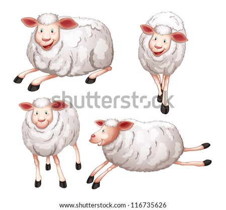 illustration of four sheeps on a white background