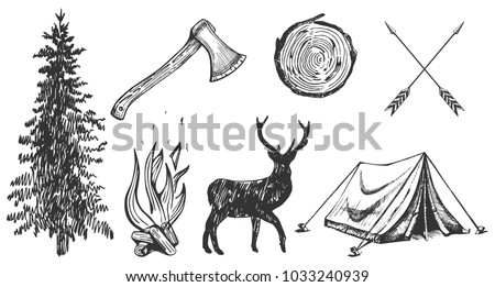 illustration of hand drawn forest camping vacation objects set: spruce, ax, camp bonfire, deer silhouette, wood cut, arrows, tent. Vintage engraving style.