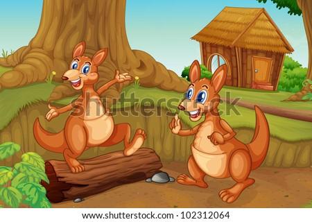 illustration of 2 kangaroos in