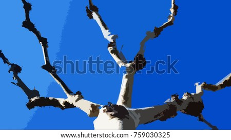 Illustration of London Plane tree with defoliated branches set against a deep blue sky