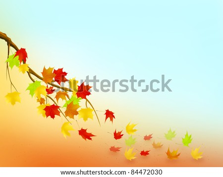 Illustration of maple branch with falling leaves - stock photo