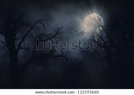 Illustration of night ravens on a trees background.