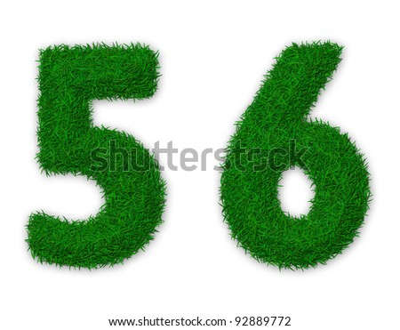 Illustration of numbers 5 and 6 made of grass