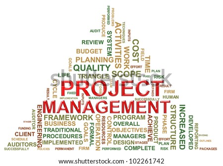 Illustration of project management wordcloud.