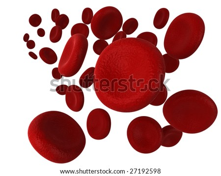 Illustration of red blood cells, isolated on a white background.