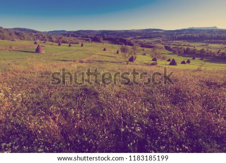 Illustration of scenic Karpaty mountains in Maramures in Romania. #1183185199