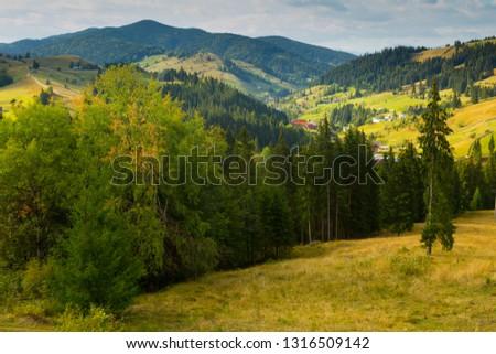 Illustration of scenic Karpaty mountains on Bucovina in Romania. #1316509142