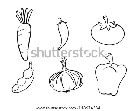 illustration of various vegetables on a white background