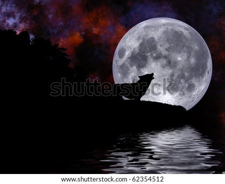 Illustration of wolf under full moon on Halloween night
