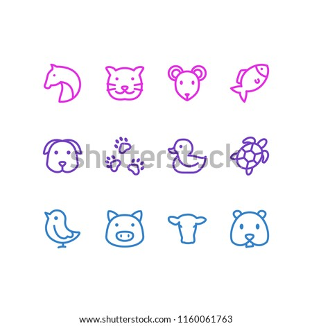 illustration of 12 zoo icons line style. Editable set of chicken, cow, pet and other icon elements.