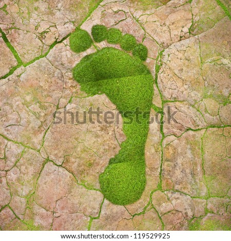 Illustration with a green footprint on dry land.