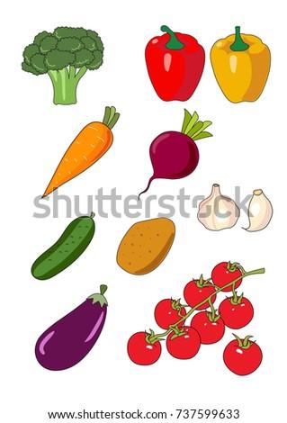 illustration with hand drawn vegetables: broccoli, paprika, carrot, cucumber, garlic, potato, tomato, eggplant, beet #737599633