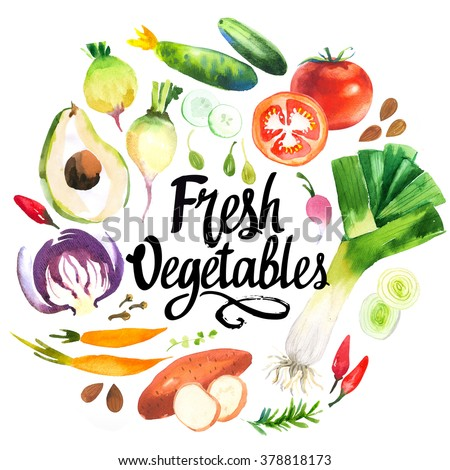 Illustration with watercolor food. Farmer's market. Set of different vegetables: leeks, peppers, carrots, cucumber, tomato, sweet potato, rosemary, avocado.