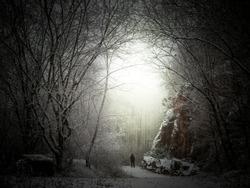 Ilumination in a dark winterlandscape