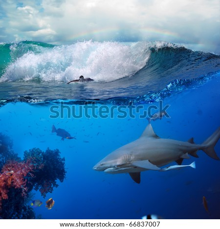 image about the ocean and surfer on the breaking wave cloudy sky over him and big dangerous angry hungry shark hunting