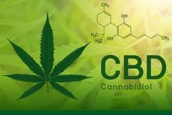 Image cannabis of the formula CBD