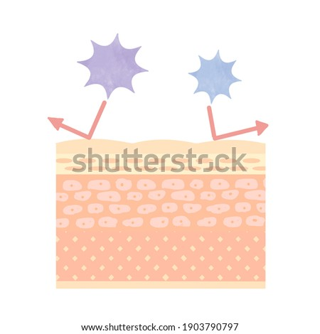 Image illustration of skin barrier function. Foto stock ©