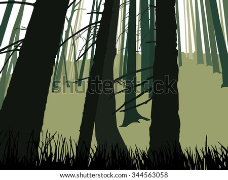 Image landscape. Eco banner. Trunks of coniferous  trees. Green and grey tones.