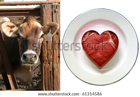 image of a beautiful cow next to an image of a fresh cut of lean beef cut into a heart shape on a white plate