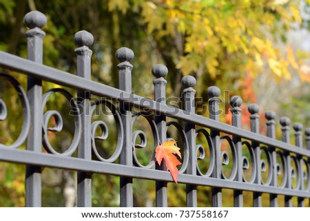 Image of a Beautiful decorative cast metal wrought fencing with artistic forging. Iron guardrail close up.Abstract autumn backgrounds.