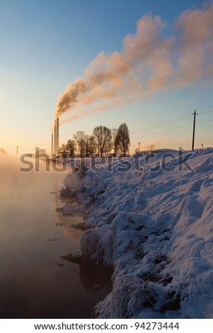 Image of a countryside plant in winter morning