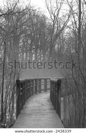 Image of a curving footbridge in a foggy forest